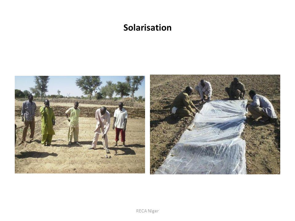Solarisation RECA Niger