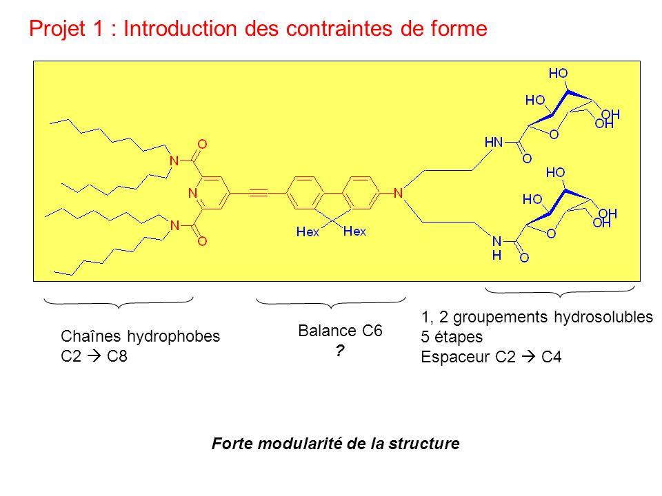 Projet 1 : Introduction des contraintes de forme Chaînes hydrophobes C2 C8 1, 2 groupements hydrosolubles 5 étapes Espaceur C2 C4 Balance C6 ? Forte m