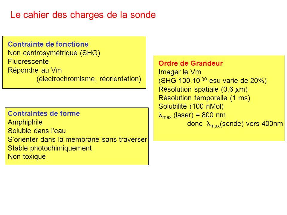 Contrainte de fonctions Non centrosymétrique (SHG) Fluorescente Répondre au Vm (électrochromisme, réorientation) Le cahier des charges de la sonde Con