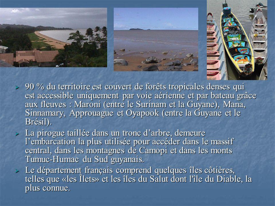 90 % du territoire est couvert de forêts tropicales denses qui est accessible uniquement par voie aérienne et par bateau grâce aux fleuves : Maroni (e