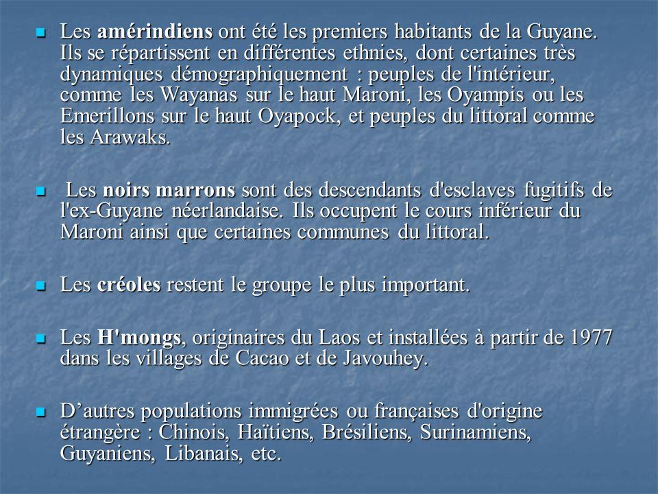 Les amérindiens ont été les premiers habitants de la Guyane. Ils se répartissent en différentes ethnies, dont certaines très dynamiques démographiquem