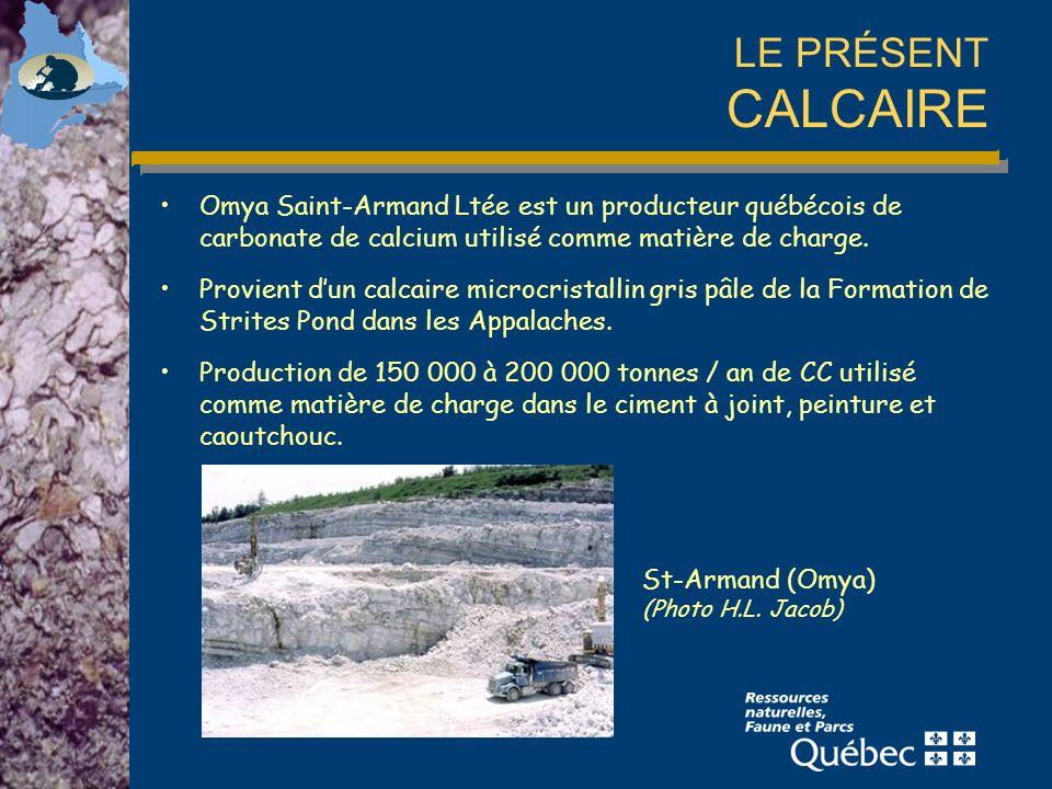 LE PRÉSENT CALCAIRE Omya Saint-Armand Ltée est un producteur québécois de carbonate de calcium utilisé comme matière de charge.