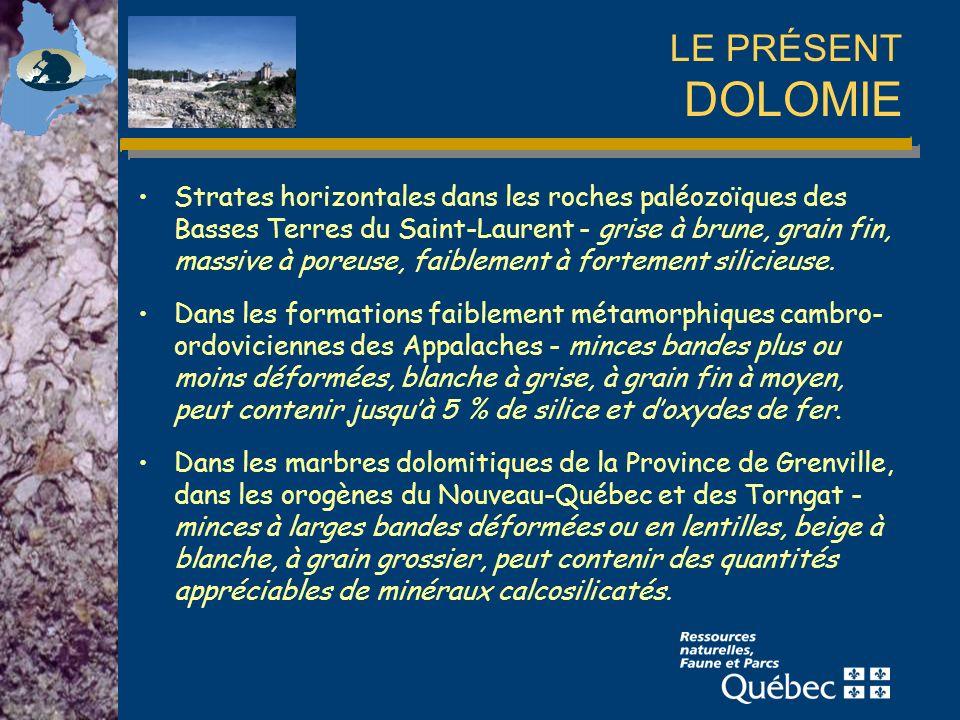 LE PRÉSENT DOLOMIE Strates horizontales dans les roches paléozoïques des Basses Terres du Saint-Laurent - grise à brune, grain fin, massive à poreuse, faiblement à fortement silicieuse.