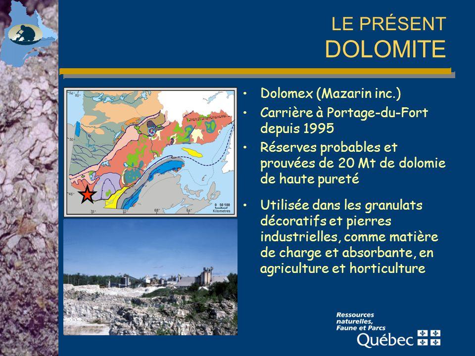 LE PRÉSENT DOLOMITE Dolomex (Mazarin inc.) Carrière à Portage-du-Fort depuis 1995 Réserves probables et prouvées de 20 Mt de dolomie de haute pureté Utilisée dans les granulats décoratifs et pierres industrielles, comme matière de charge et absorbante, en agriculture et horticulture
