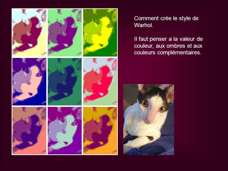 Comment crée le style de Warhol. Il faut penser a la valeur de couleur, aux ombres et aux couleurs complémentaires.