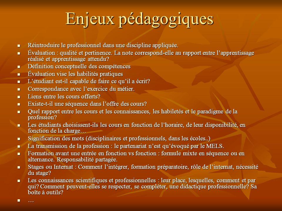 Enjeux pédagogiques Enjeux pédagogiques Réintroduire le professionnel dans une discipline appliquée.