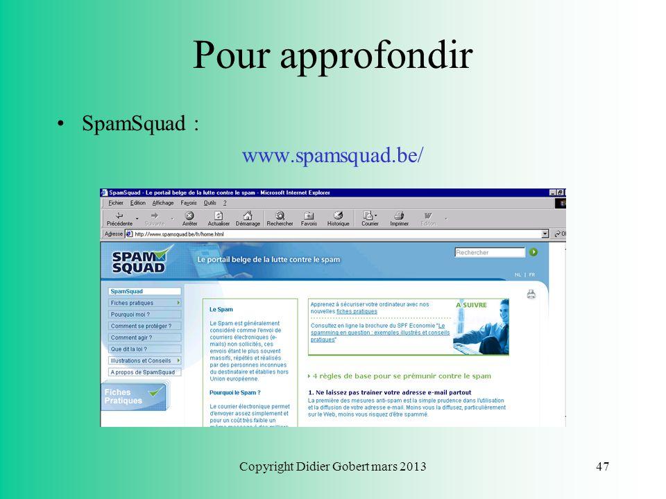 Copyright Didier Gobert mars 201346 Pour approfondir Le site web des bonnes pratiques juridiques ! : www.infoshopping.be