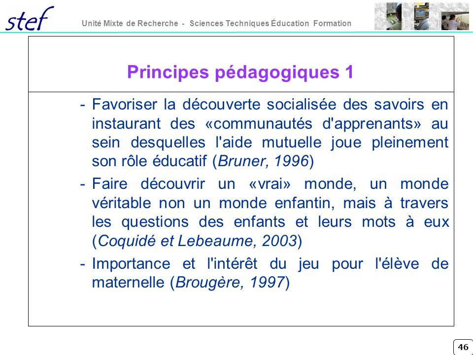 46 Unité Mixte de Recherche - Sciences Techniques Éducation Formation Principes pédagogiques 1 -Favoriser la découverte socialisée des savoirs en inst
