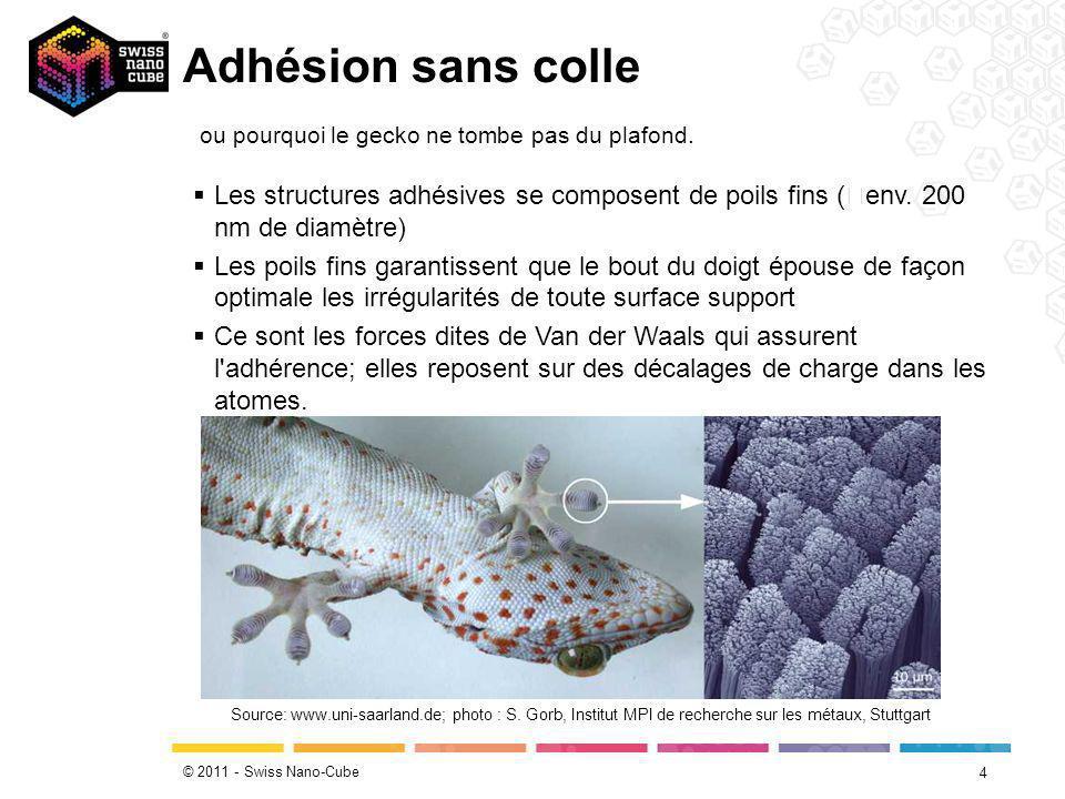 © 2011 - Swiss Nano-Cube Adhésion sans colle 5 Source: www.max-wissen.de/Fachwissen/show/0/Didaktik/Bionik.html Les geckos parviennent à adhérer contre pratiquement toutes les surfaces.