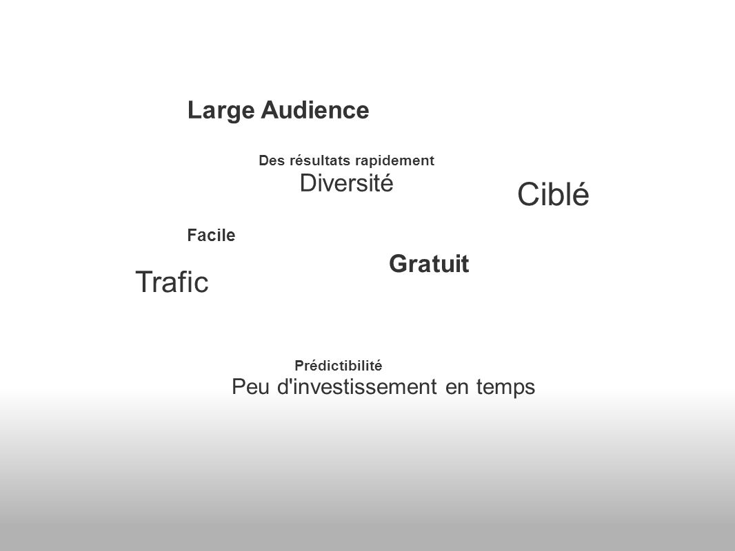 Large Audience Des résultats rapidement Diversité Facile Trafic Prédictibilité Peu d investissement en temps Ciblé Gratuit