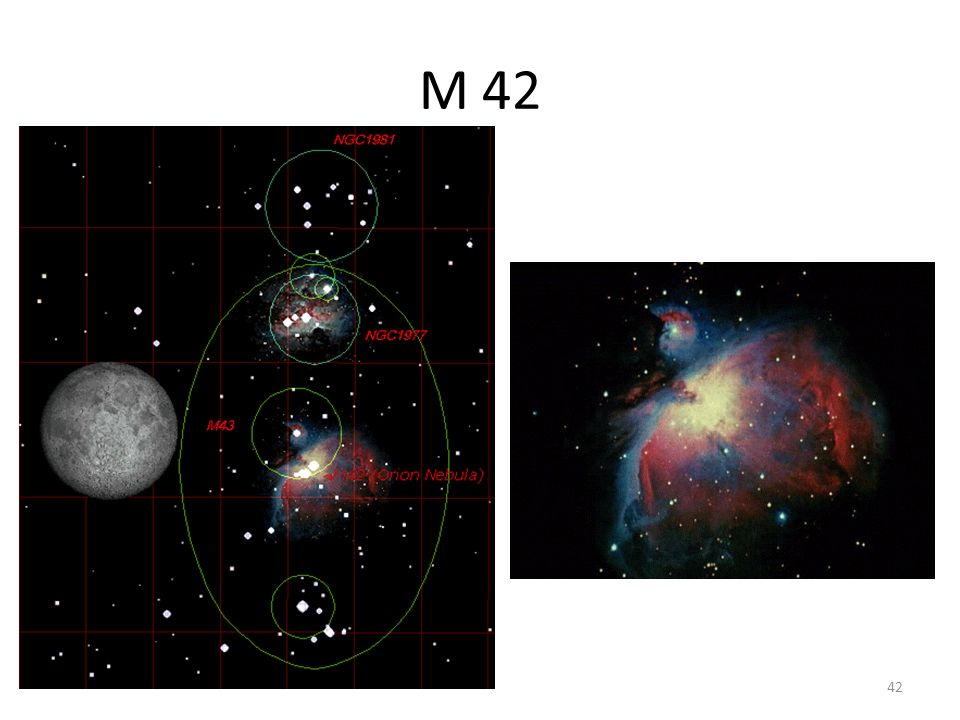 M 42 42