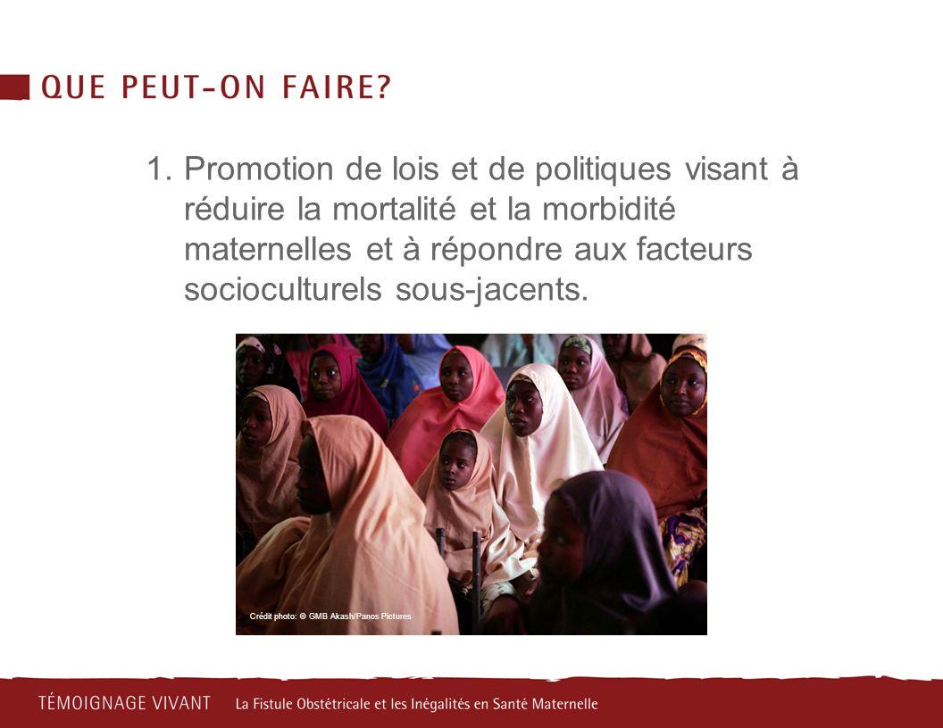 1.Promotion de lois et de politiques visant à réduire la mortalité et la morbidité maternelles et à répondre aux facteurs socioculturels sous-jacents.