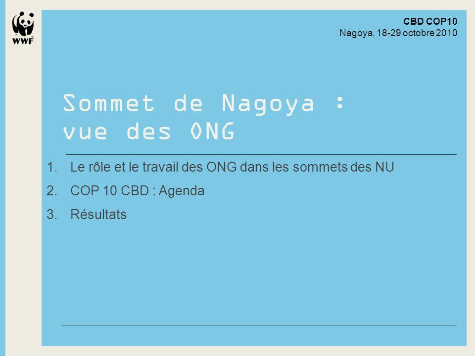 1 Rôle et travail des ONG dans les sommets des NU Sommet de Nagoya : vue des ONG © Frank Parhizgar / WWF-Canada Presentation to Company Name24 April 2014 - 3