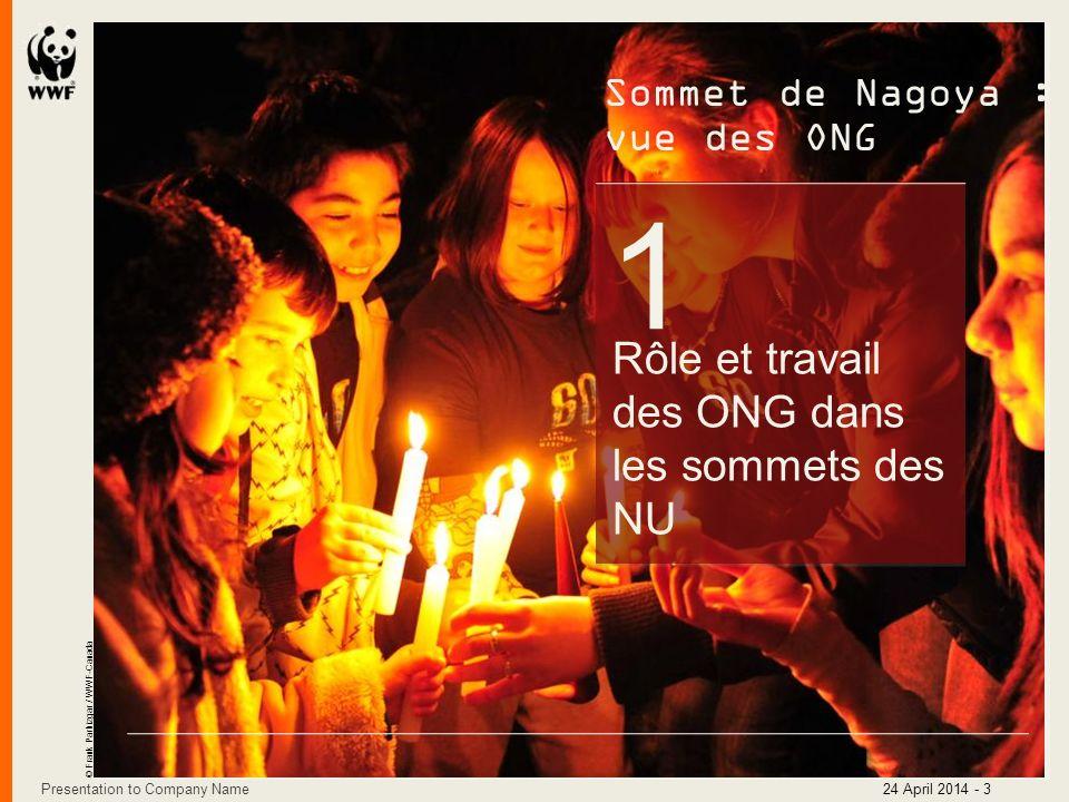 1 Rôle et travail des ONG dans les sommets des NU Sommet de Nagoya : vue des ONG © Frank Parhizgar / WWF-Canada Presentation to Company Name24 April 2