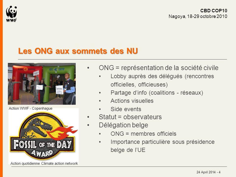 Les ONG aux sommets des NU 24 April 2014 - 4 ONG = représentation de la société civile Lobby auprès des délégués (rencontres officielles, officieuses)