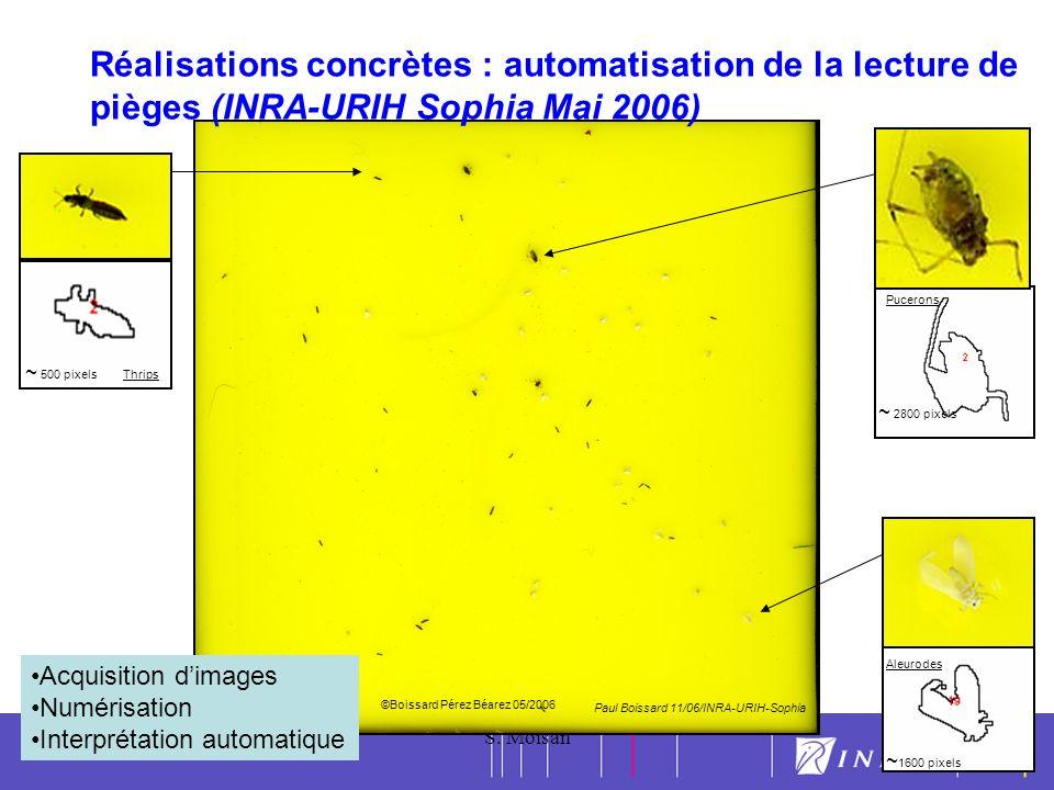 12 30/05/2007S. Moisan12 ~ 500 pixels ~ 2800 pixels ~ 1600 pixels Aleurodes Pucerons Thrips QUELQUES RESULTATS Automatisation des reconnaissances et c