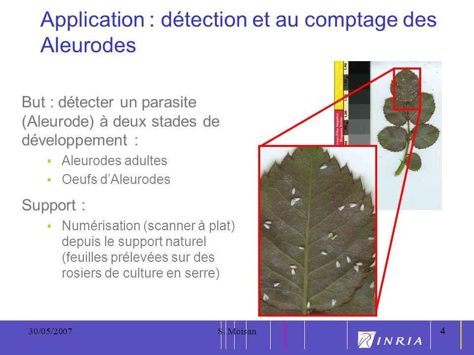 4 30/05/2007S. Moisan4 Application : détection et au comptage des Aleurodes But : détecter un parasite (Aleurode) à deux stades de développement : Ale