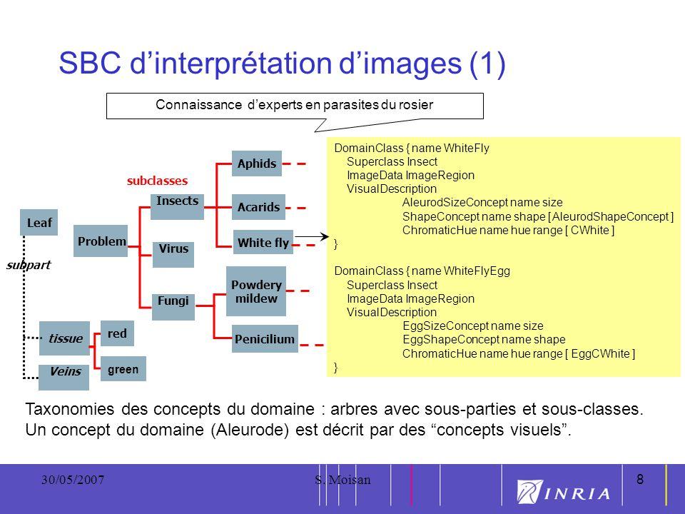8 30/05/2007S. Moisan8 SBC dinterprétation dimages (1) Connaissance dexperts en parasites du rosier DomainClass { name WhiteFly Superclass Insect Imag