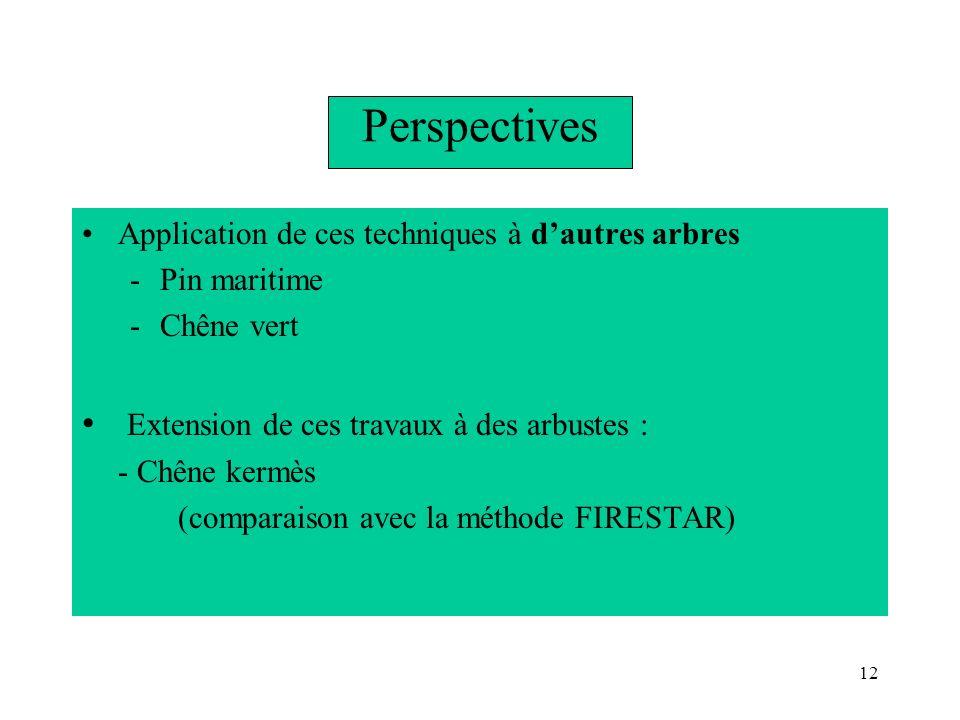12 Perspectives Application de ces techniques à dautres arbres -Pin maritime -Chêne vert Extension de ces travaux à des arbustes : - Chêne kermès (com