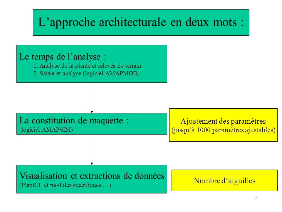 4 Lapproche architecturale en deux mots : Le temps de lanalyse : 1. Analyse de la plante et relevés de terrain 2. Saisie et analyse (logiciel AMAPMOD)