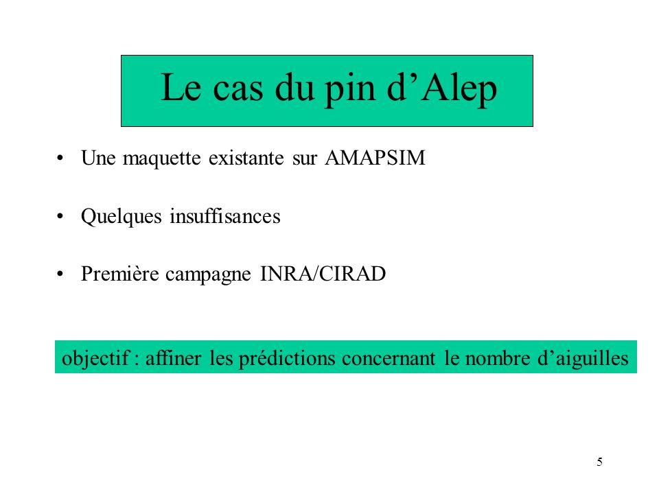 5 Le cas du pin dAlep Une maquette existante sur AMAPSIM Quelques insuffisances Première campagne INRA/CIRAD objectif : affiner les prédictions concer