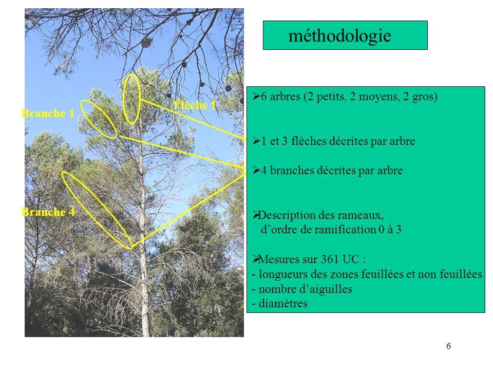 6 méthodologie 6 arbres (2 petits, 2 moyens, 2 gros) 1 et 3 flèches décrites par arbre 4 branches décrites par arbre Description des rameaux, dordre d