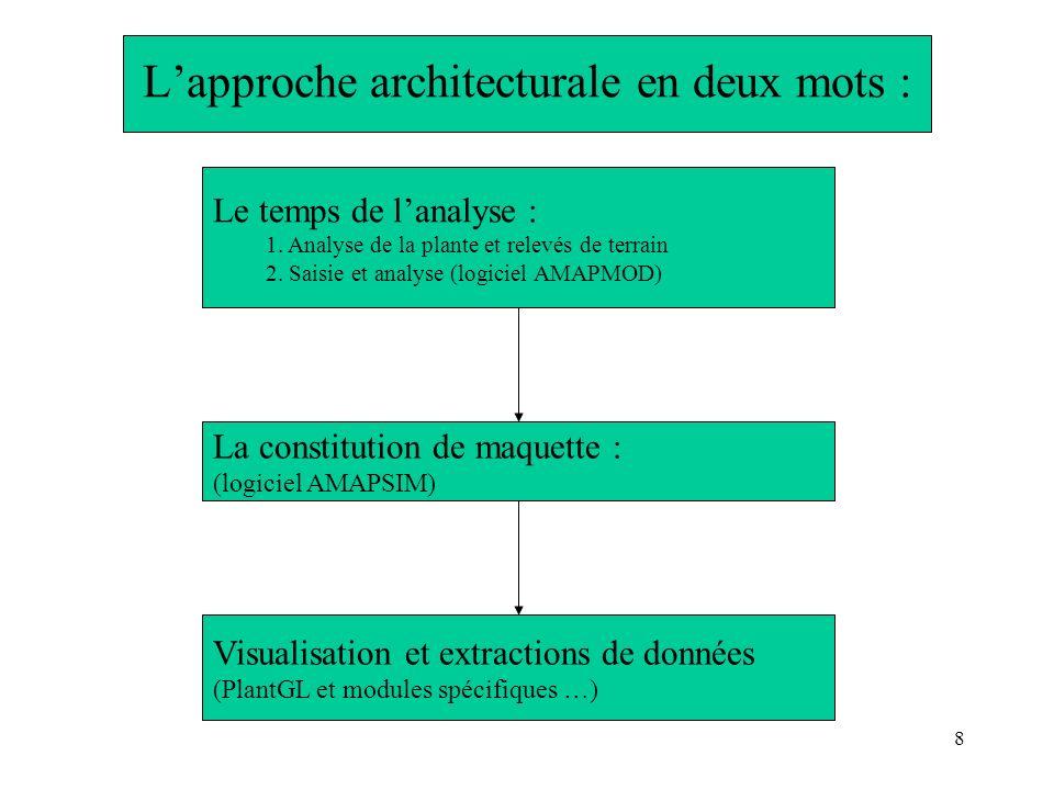 8 Lapproche architecturale en deux mots : Le temps de lanalyse : 1. Analyse de la plante et relevés de terrain 2. Saisie et analyse (logiciel AMAPMOD)