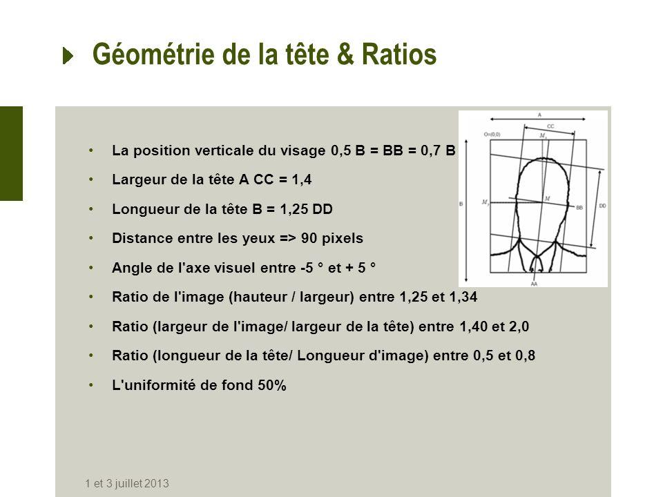Géométrie de la tête & Ratios La position verticale du visage 0,5 B = BB = 0,7 B Largeur de la tête A CC = 1,4 Longueur de la tête B = 1,25 DD Distanc