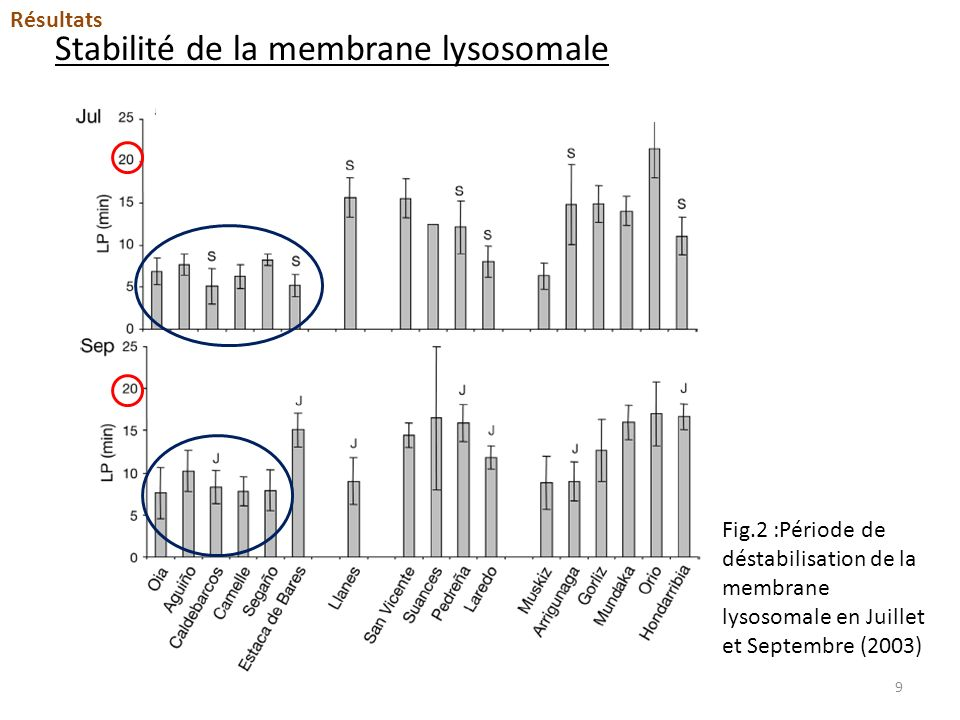 Changements de la structure lysosomale.