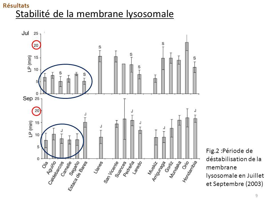 Stabilité de la membrane lysosomale Résultats Fig.2 :Période de déstabilisation de la membrane lysosomale en Juillet et Septembre (2003) 9