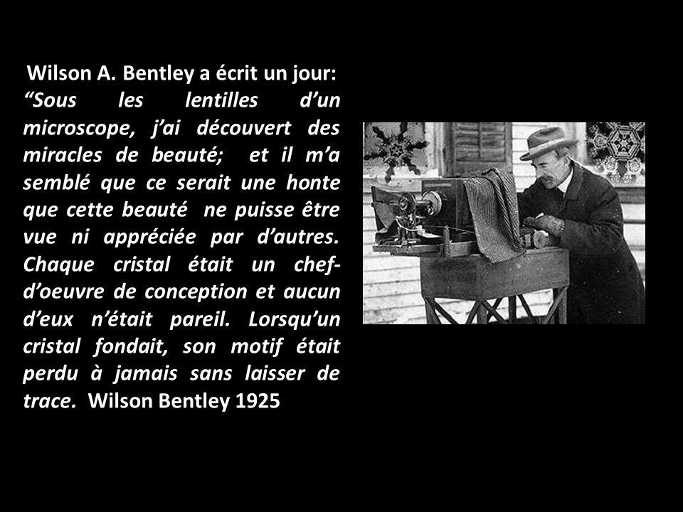 Wilson A.