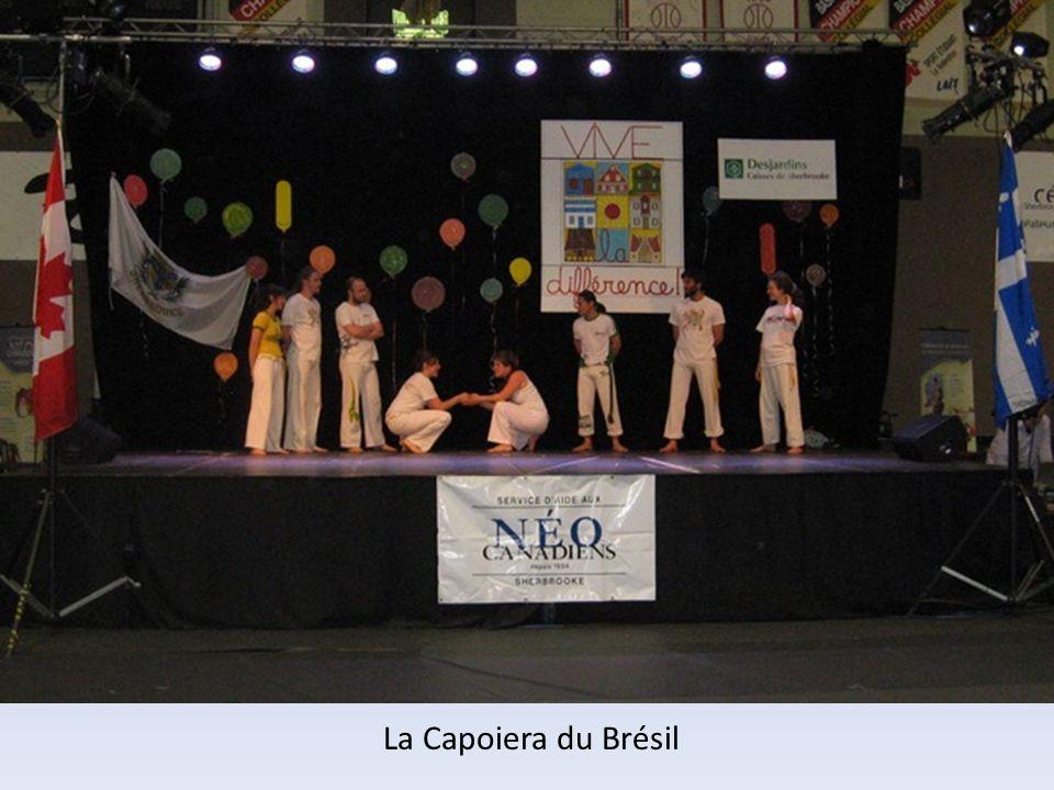 La Capoiera du Brésil
