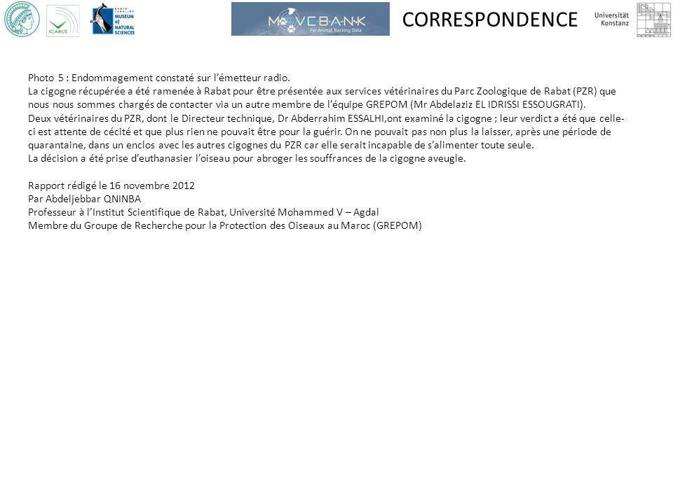 CORRESPONDENCE Photo 5 : Endommagement constaté sur lémetteur radio. La cigogne récupérée a été ramenée à Rabat pour être présentée aux services vétér