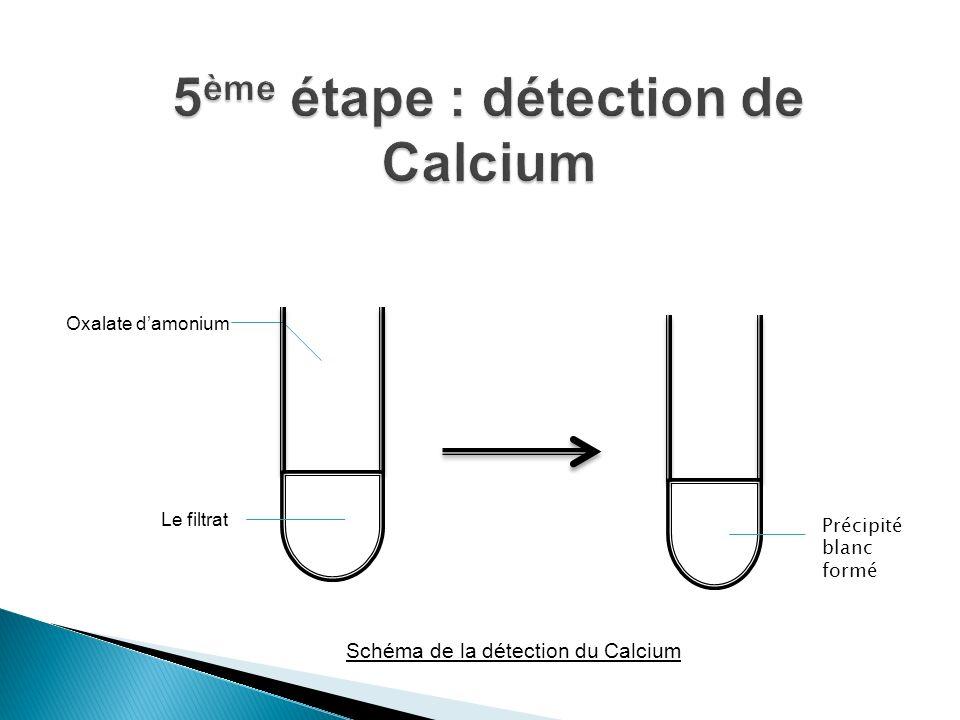 Schéma de la détection de Calcium Précipité blanc formé Oxalate damonium Schéma de la détection du Calcium Le filtrat