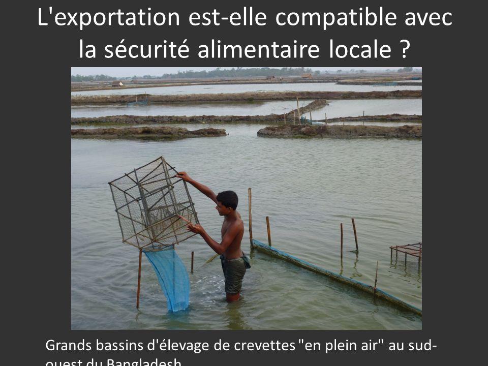 L'exportation est-elle compatible avec la sécurité alimentaire locale ? Grands bassins d'élevage de crevettes