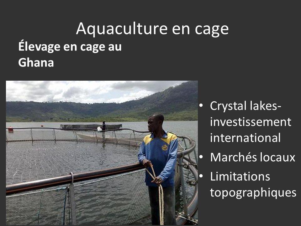 Aquaculture en cage Élevage en cage au Ghana Crystal lakes- investissement international Marchés locaux Limitations topographiques