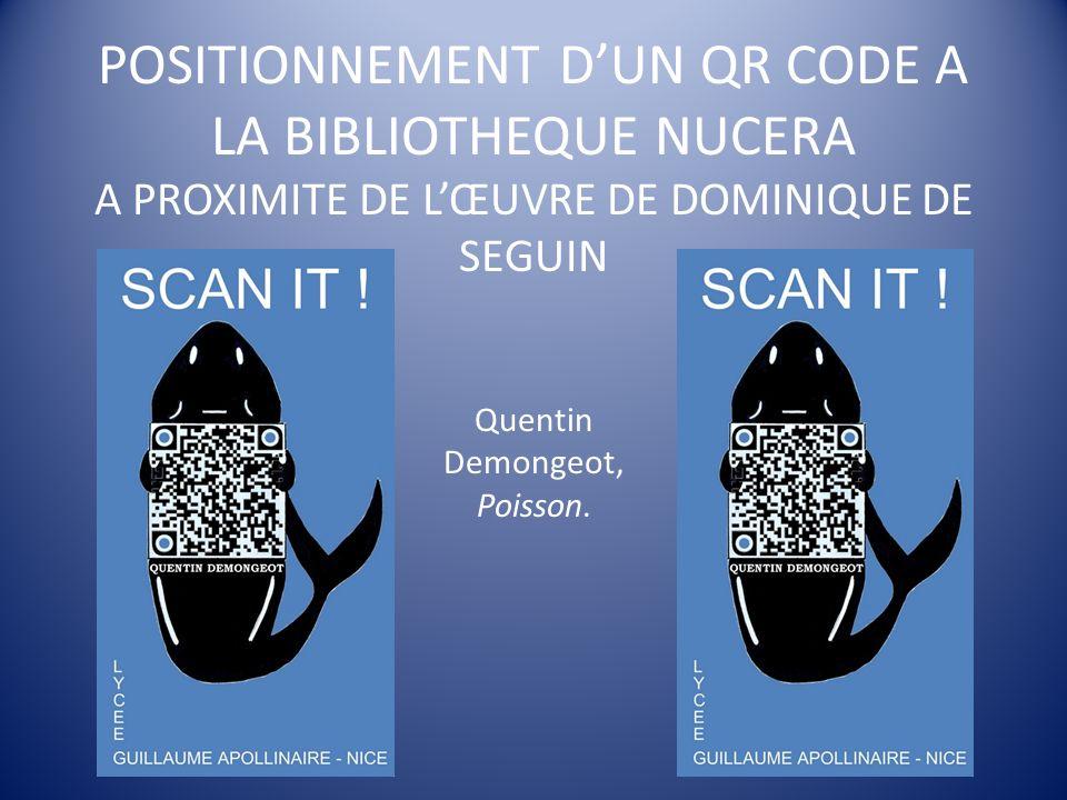 POSITIONNEMENT DUN QR CODE A LA BIBLIOTHEQUE NUCERA A PROXIMITE DE LŒUVRE DE DOMINIQUE DE SEGUIN Quentin Demongeot, Poisson.
