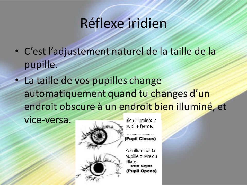 Réflexe iridien Cest ladjustement naturel de la taille de la pupille. La taille de vos pupilles change automatiquement quand tu changes dun endroit ob