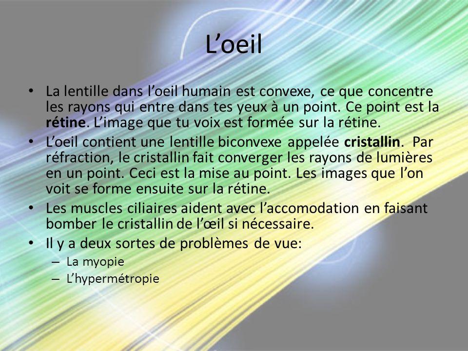 Loeil La lentille dans loeil humain est convexe, ce que concentre les rayons qui entre dans tes yeux à un point. Ce point est la rétine. Limage que tu