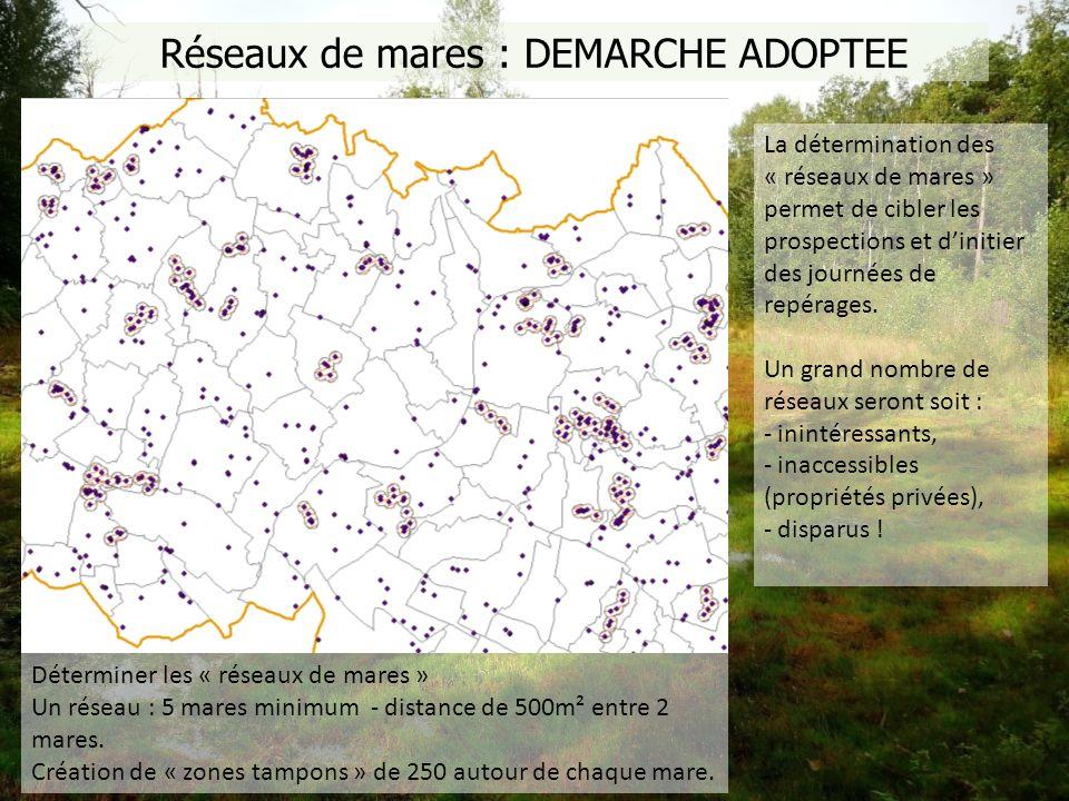 Réseaux de mares : DEMARCHE ADOPTEE Déterminer les « réseaux de mares » Un réseau : 5 mares minimum - distance de 500m² entre 2 mares. Création de « z