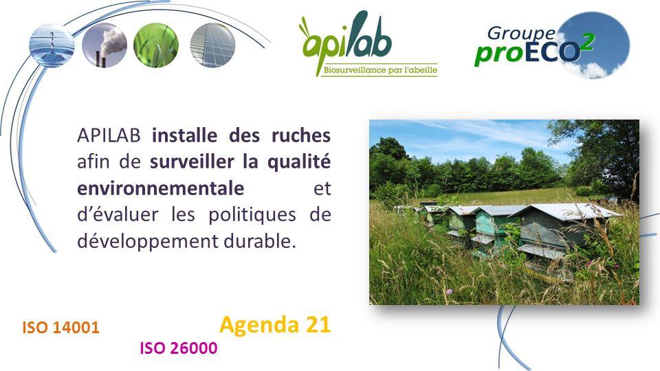 APILAB installe des ruches afin de surveiller la qualité environnementale et dévaluer les politiques de développement durable.