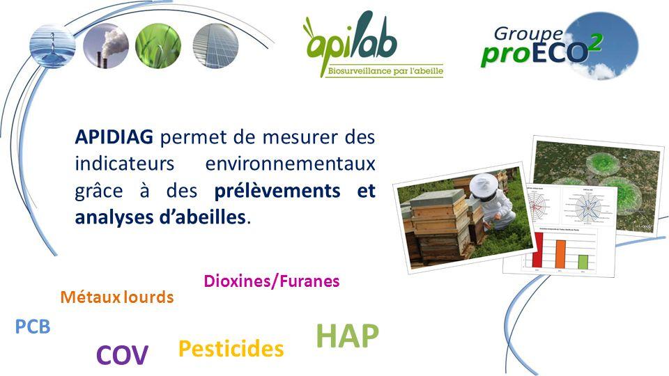 APIDIAG permet de mesurer des indicateurs environnementaux grâce à des prélèvements et analyses dabeilles.