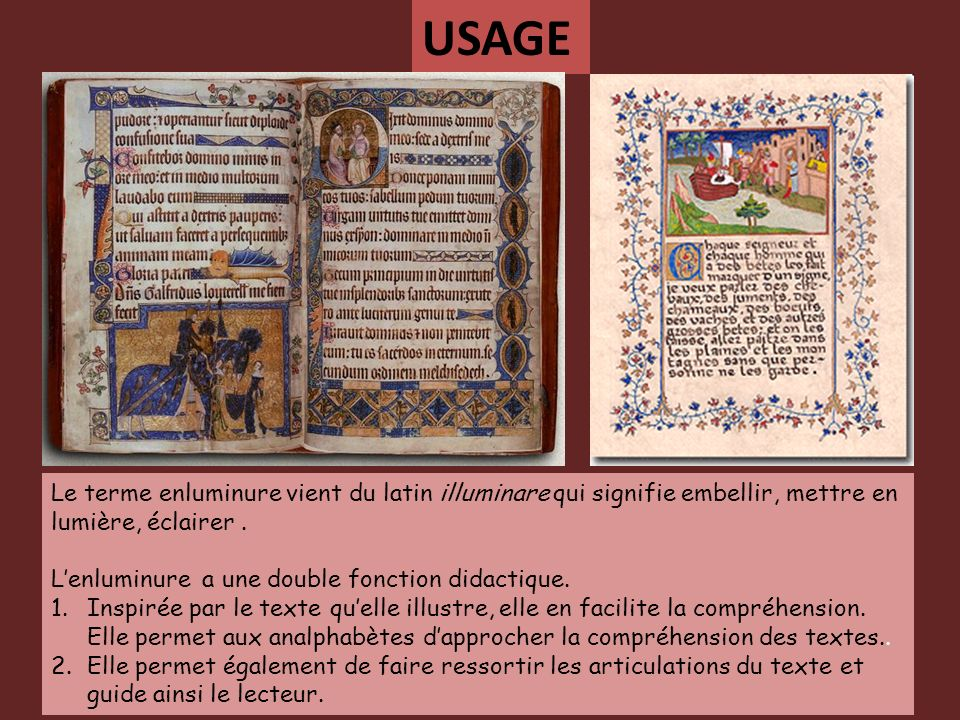Le terme enluminure vient du latin illuminare qui signifie embellir, mettre en lumière, éclairer. Lenluminure a une double fonction didactique. 1.Insp