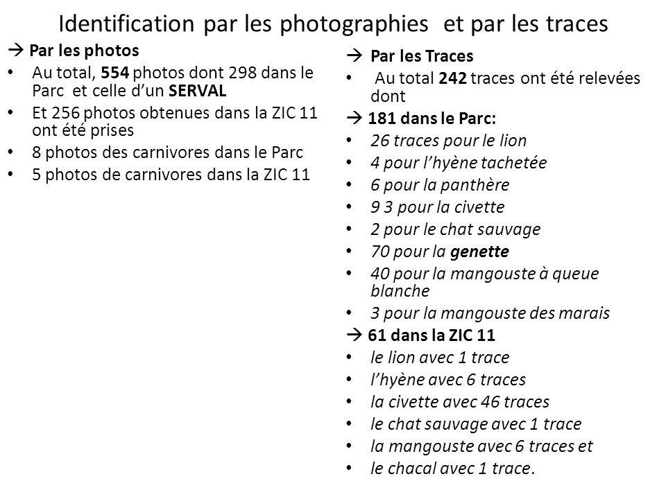 Identification par les photographies et par les traces Par les photos Au total, 554 photos dont 298 dans le Parc et celle dun SERVAL Et 256 photos obt