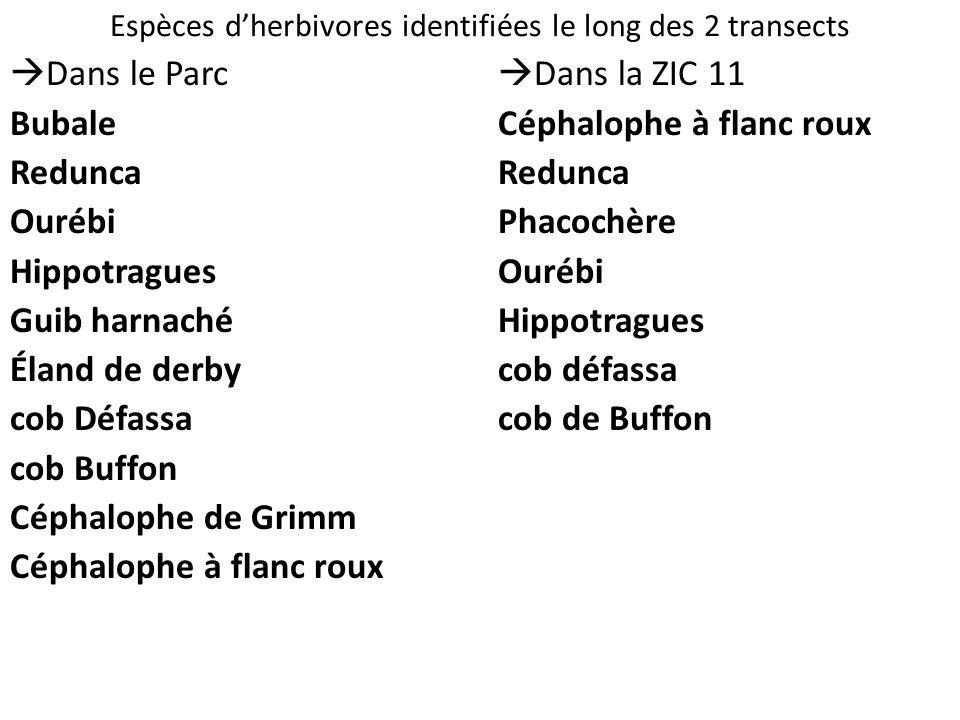 Espèces dherbivores identifiées le long des 2 transects Dans le Parc Bubale Redunca Ourébi Hippotragues Guib harnaché Éland de derby cob Défassa cob B