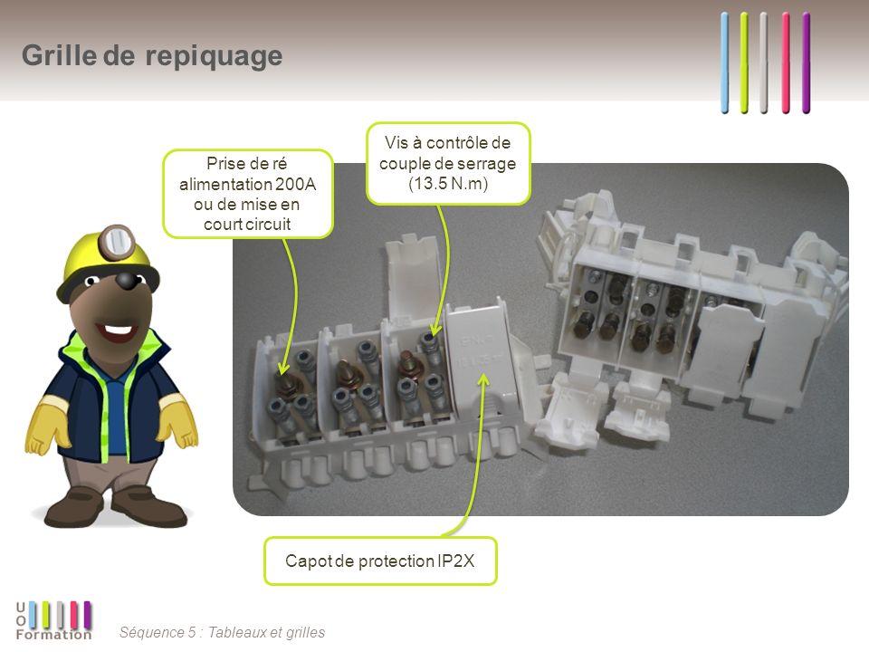 Séquence 5 : Tableaux et grilles Grille de repiquage Capot de protection IP2X Prise de ré alimentation 200A ou de mise en court circuit Vis à contrôle
