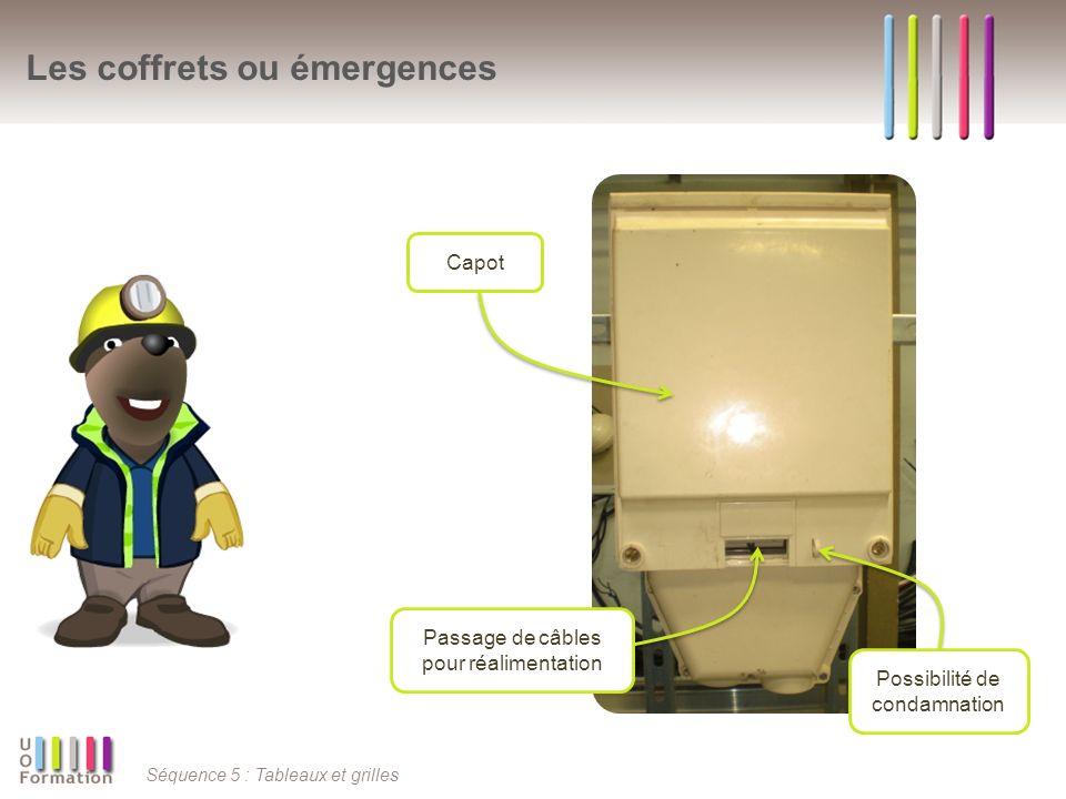 Séquence 5 : Tableaux et grilles Les coffrets ou émergences Passage de câbles pour réalimentation Possibilité de condamnation Capot