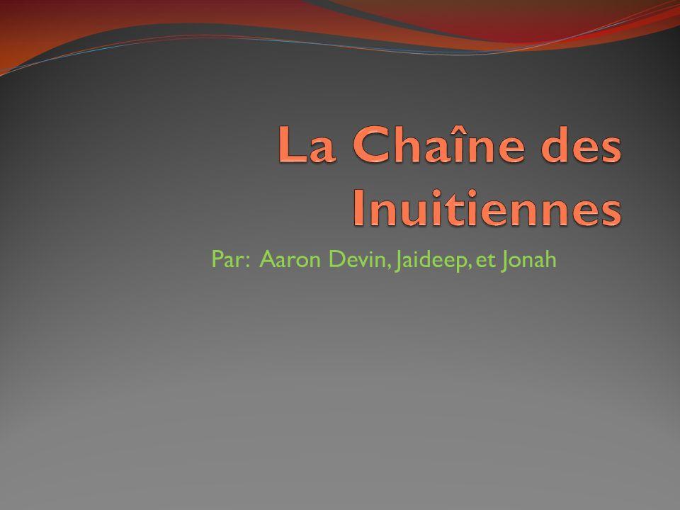 Par: Aaron Devin, Jaideep, et Jonah