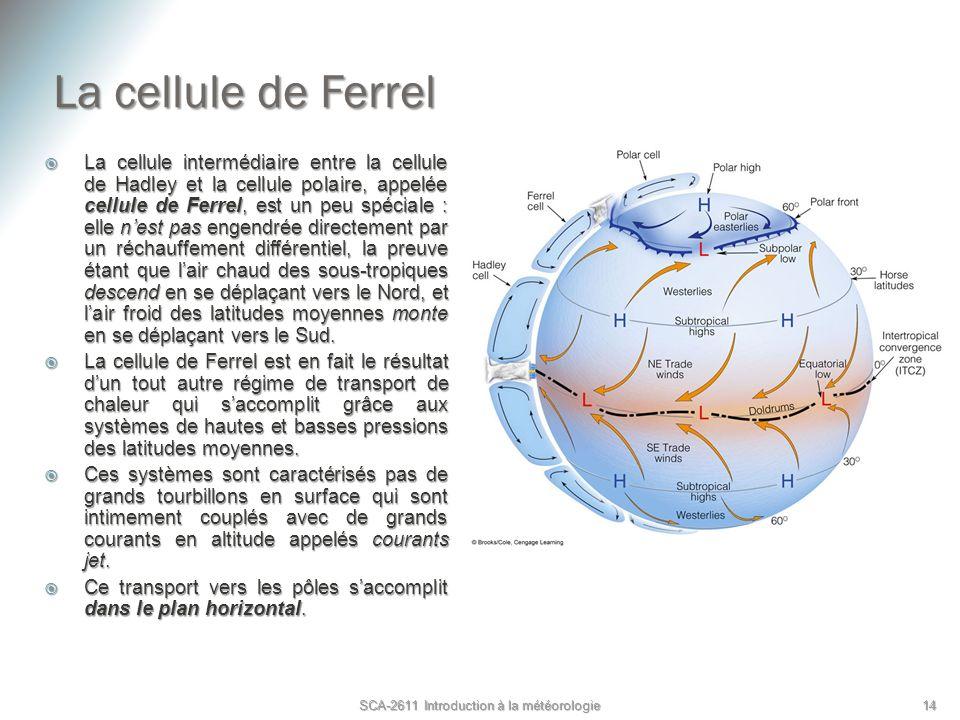 La cellule de Ferrel La cellule intermédiaire entre la cellule de Hadley et la cellule polaire, appelée cellule de Ferrel, est un peu spéciale : elle