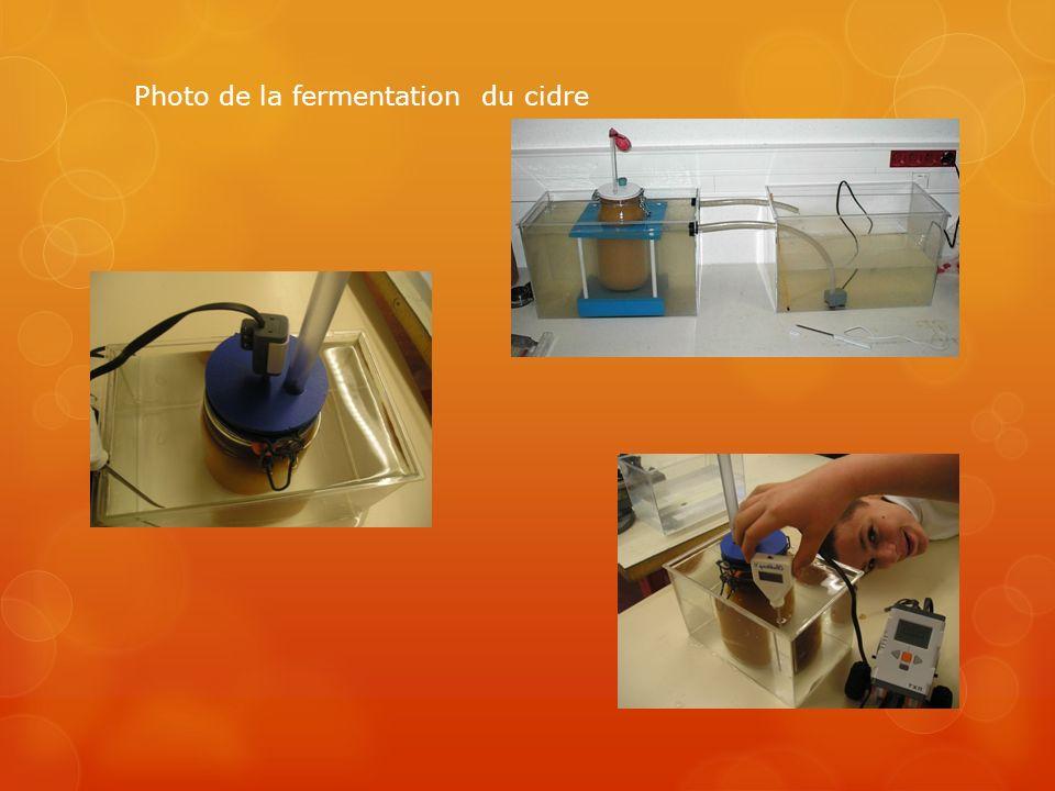 Photo de la fermentation du cidre